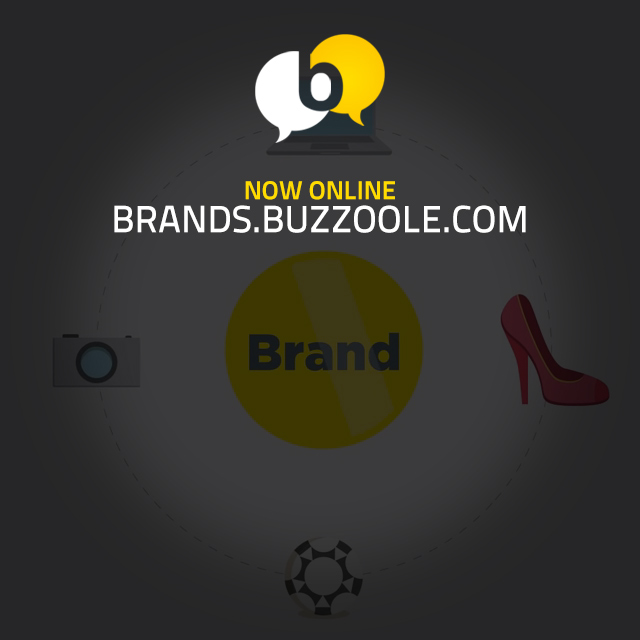 Buzzoole for brands!