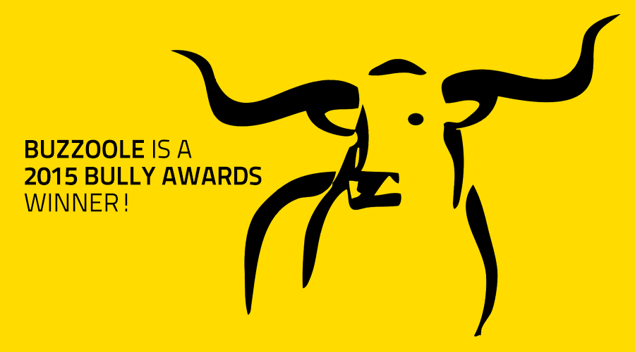 Updated: Buzzoole has been selected for 2015 Bully Awards!